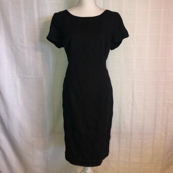 Talbots Plus Size Dress